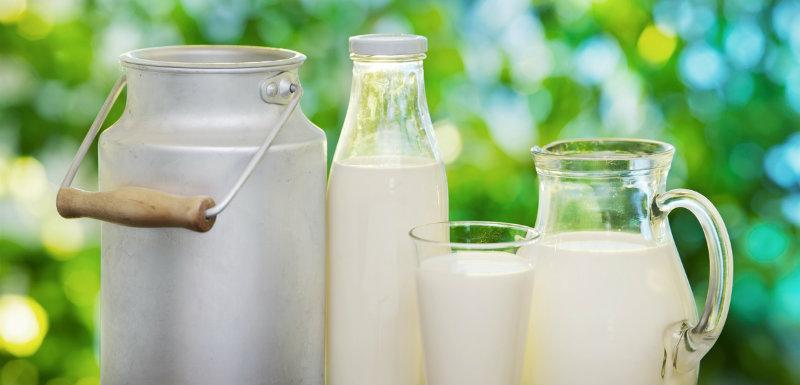 Les produits laitiers, bons pour le régime ?